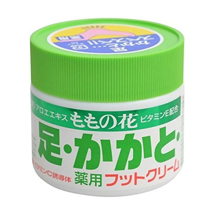 気づくジャムナイロンももの花 薬用フットクリーム 70g
