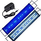 Aquarium Light LED 24inch- 32inch Adjustable Fish Tank Light Hood Lighting Marine Freshwater Lamp (60cm Blue and White)
