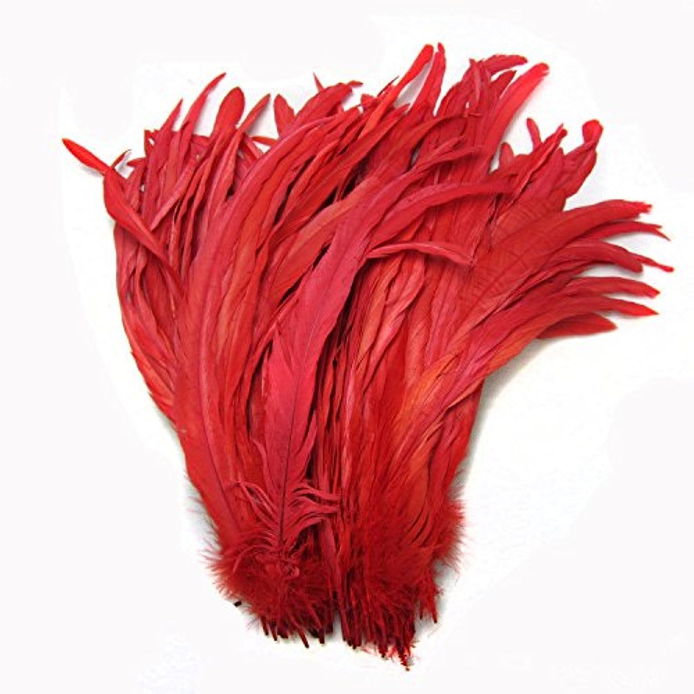 ペルメル摘む土砂降りKOLIGHT セットの100ピース 35-40cm ナチュラルオンドリコークテール羽DIYホームウェディングパーティーオフィスデコレーション (赤)