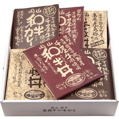 カレー レトルト セット 6食 ご当地 岡山県産 和牛カレー 和牛丼 味豚丼 贈答品 お取り寄せ