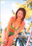 ミスマガジン2001 若林菜美子 [DVD]