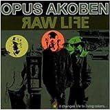 Raw Life (Hip-Hop)
