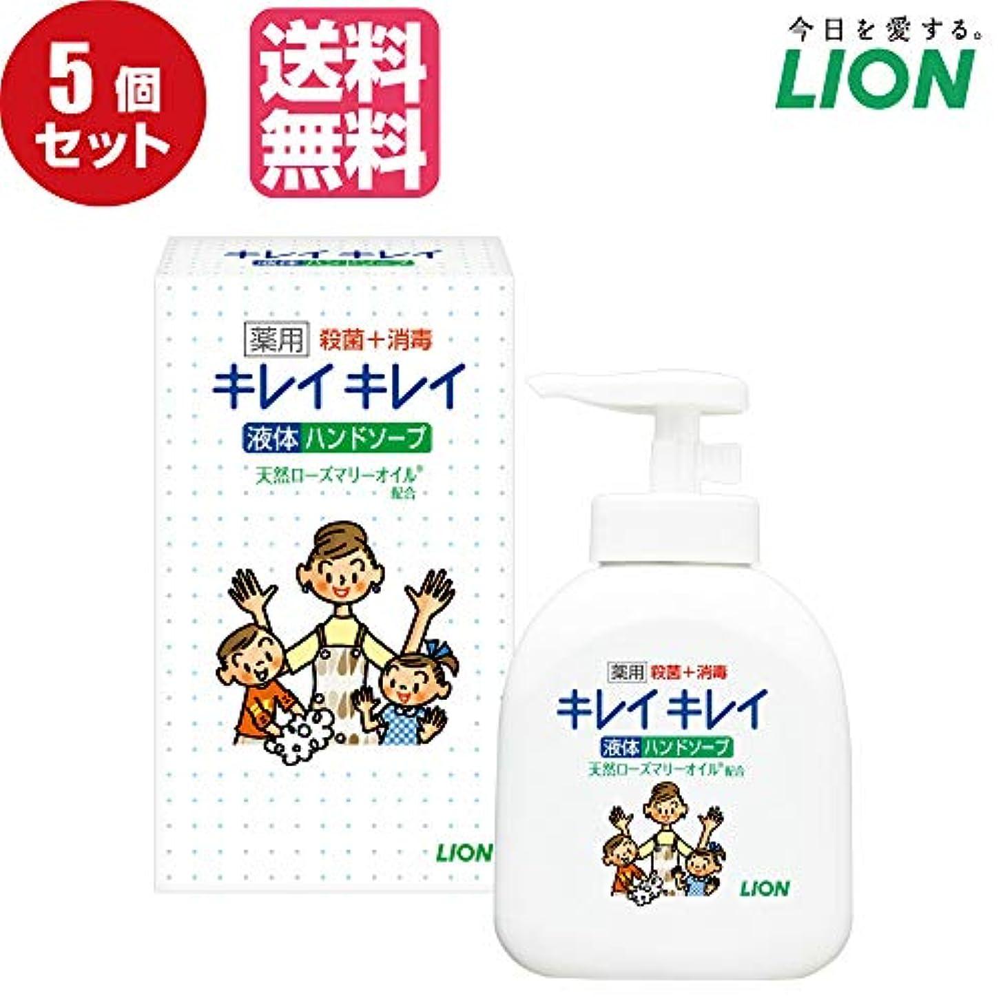 【5個セット販売】キレイキレイ薬用液体ハンドソープ250ml ノベルティギフト用化粧箱入