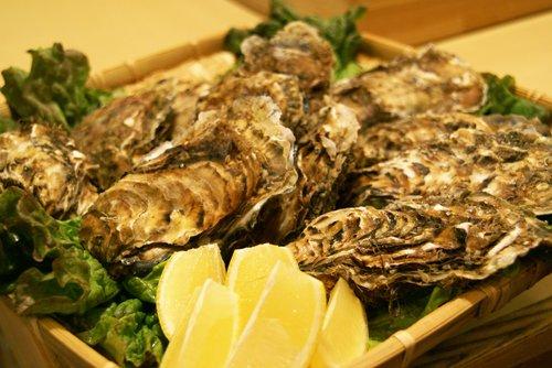 北海道・牡蠣(かき)(殻付き 生)牡蠣・厚岸西岸 仙鳳趾【牡蛎】Mサイズ30個