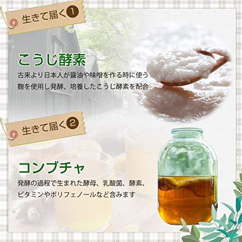 『麹とコンブチャの生酵素 30日分』の3枚目の画像