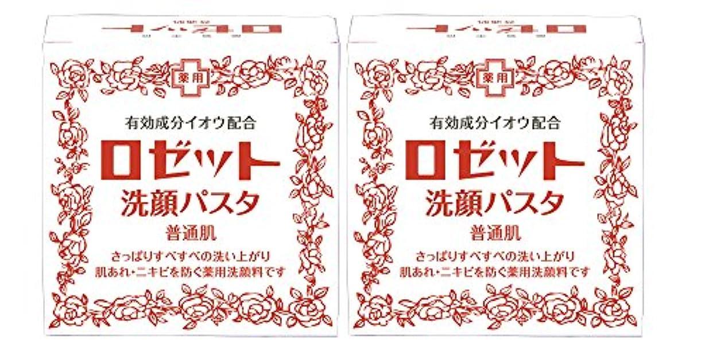 他に単位幸運なロゼット洗顔パスタ 普通肌 90g×2個パック (医薬部外品)