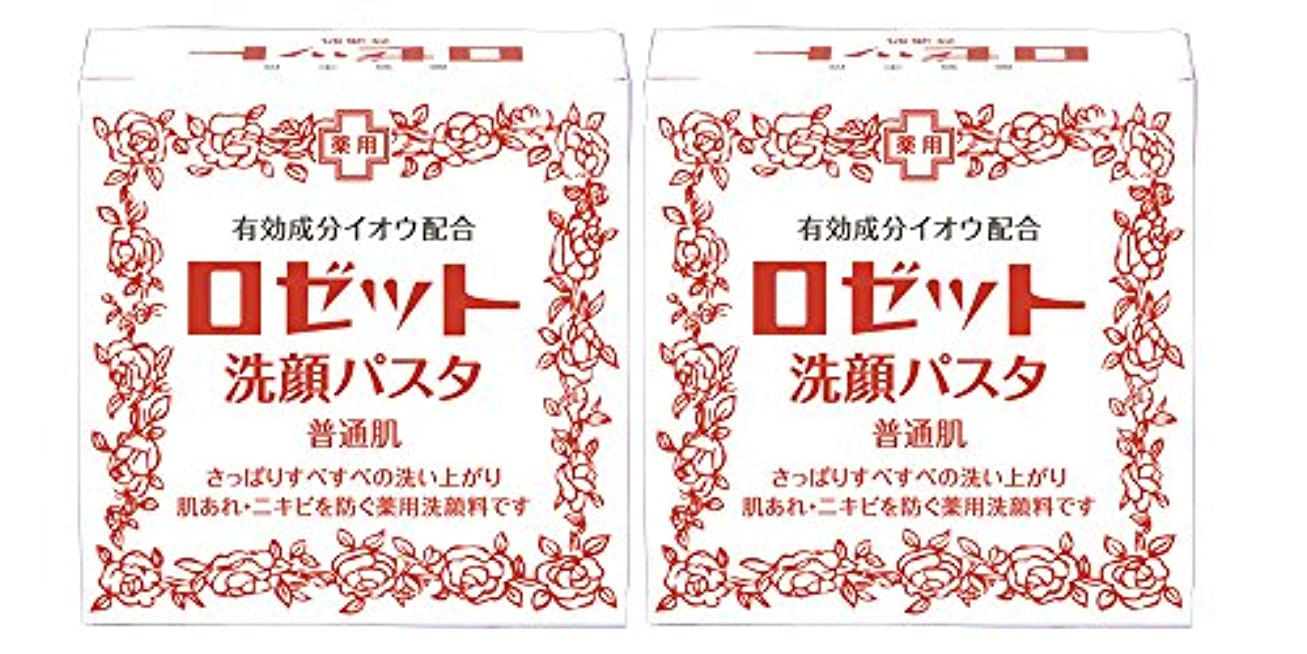 韓国市の中心部シーサイドロゼット洗顔パスタ 普通肌 90g×2個パック (医薬部外品)