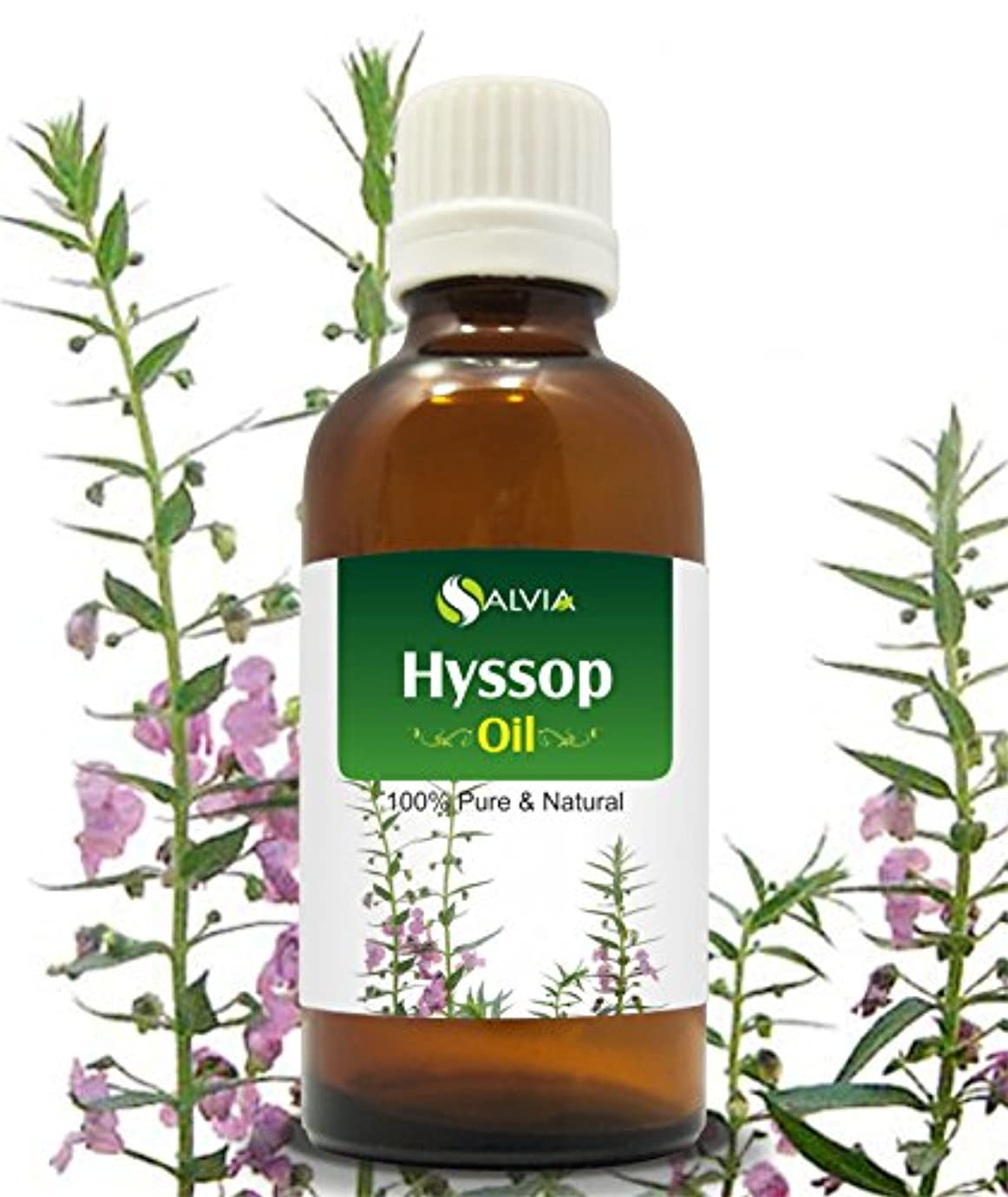 HYSSOP OIL 100% NATURAL PURE UNDILUTED UNCUT ESSENTIAL OILS 50ML