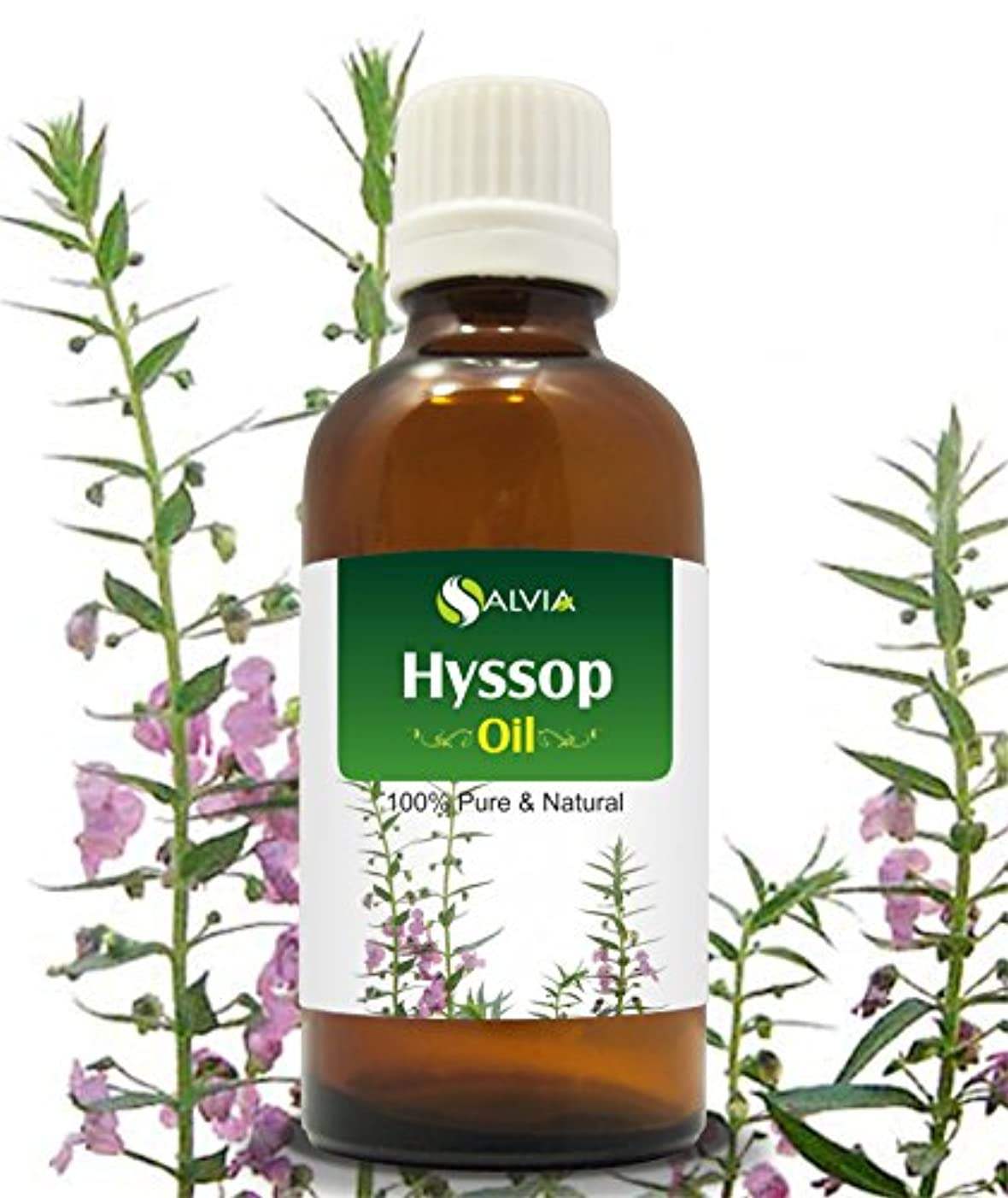 理解する下向き汚れるHYSSOP OIL 100% NATURAL PURE UNDILUTED UNCUT ESSENTIAL OILS 100ML