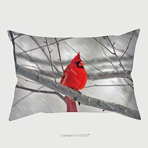 カスタムマイクロファイバー枕カバープロテクターCardinal in冬123285枕ケースカバー装飾...