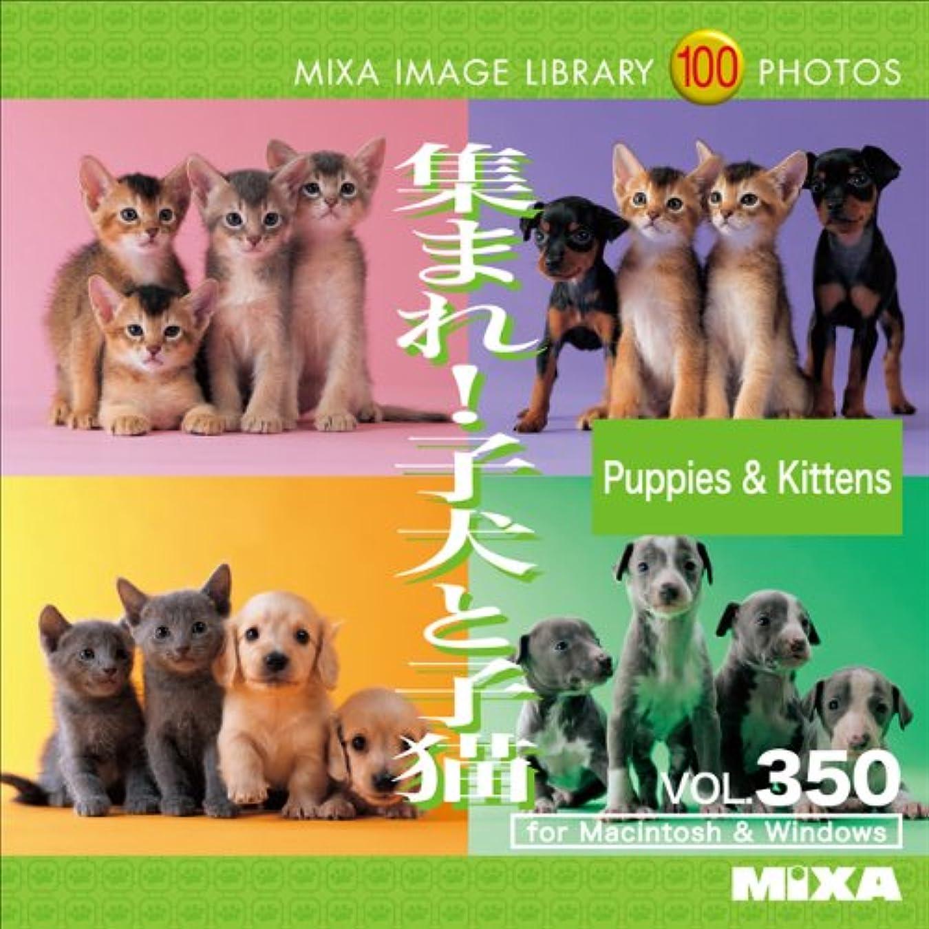 歯科のセントラメMIXA IMAGE LIBRARY Vol.350 集まれ!子犬と子猫