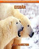 Eisbaer: Tolle Bilder & Wissenswertes ueber Tiere in der Natur