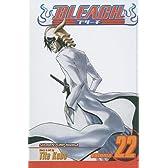 Bleach 22 (Bleach (Prebound))