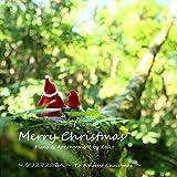 Merry Christmas クリスマスの森へ