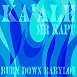 Burn Down Babylon (feat. Mr. Kapu)