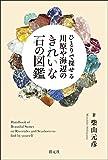 柴山元彦 'ひとりで探せる 川原や海辺のきれいな石の図鑑'