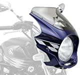 DAYTONA(デイトナ) 【AR Breaker(ARブレーカー) ビキニカウル】 XJR1300('07)/DPブルーメタリックL ストロボカラー 70076