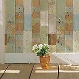 はがせるDIY壁紙シール + ハリーステッカー リフォームシール 粘着付き 壁紙 木目 パステルペイントウッド (A4サイズ)