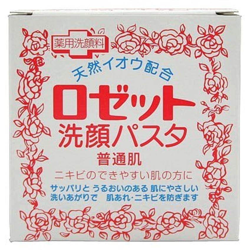 ささやき容器ピアニストロゼット洗顔パスタ 普通肌