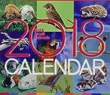 バード&スモールアニマルカレンダー 2018年