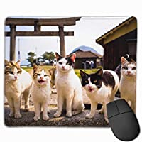Cheng xiao Mouse Pad Five Cats Front View Rectangle Rubber Mousepad Non-toxic Print Gaming Mouse Pad with Black Lock Edge,9.8 * 11.8 in,ベーシック マウスパッド ゲーム用 標準サイズ