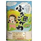 玄米 ふさこがね 10kg 千葉県産 29年産 (玄米10キロ)