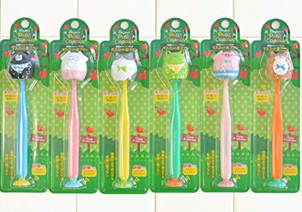 アラビア語相互接続着実にプティコパン 吸盤付き歯ブラシ 6本セット