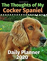 The Thoughts of My Cocker Spaniel: Daily Planner 2020