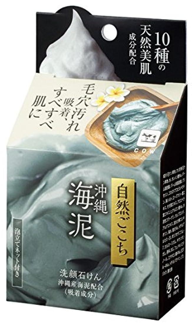 一過性解決する辞書自然ごこち 沖縄海泥 洗顔石けん 80g