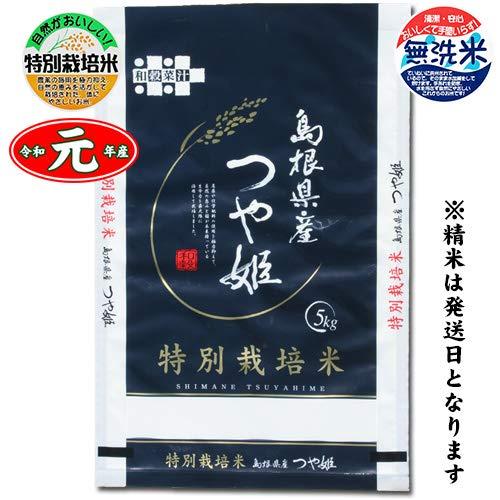 島根県大田市 特別栽培米 石見銀山つや姫 白米5kg[無洗米加工] 令和元年産