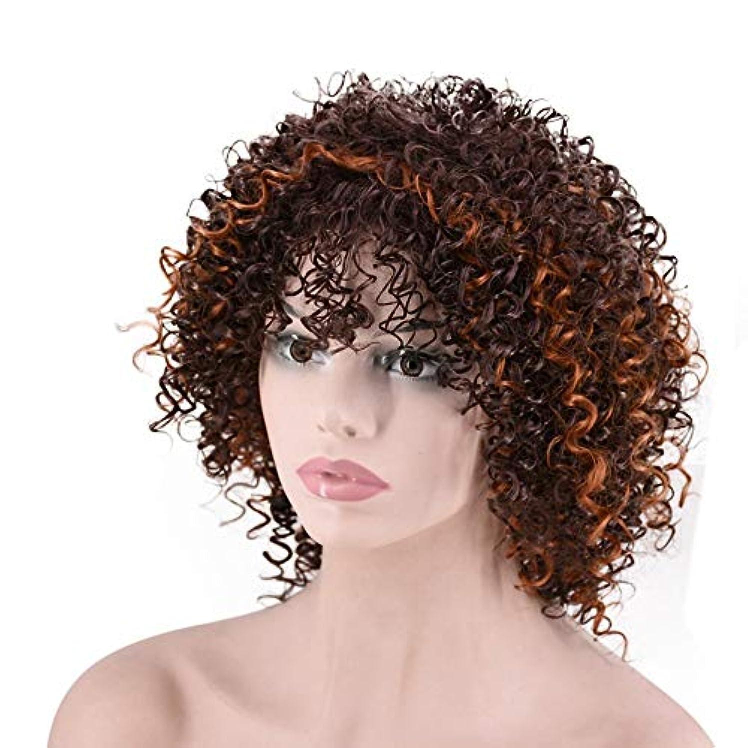 先史時代の申し立てられた印象派YOUQIU 女性のデイリードレスウィッグのための短い波状カーリーヘアブラウン熱金庫人工毛 (色 : Photo Color)