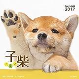 カレンダー2017 子柴 こしば  卓上 (ヤマケイカレンダー2017)