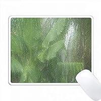 エキゾチックな植物を持つトロピックフロリダの嵐の印刷 PC Mouse Pad パソコン マウスパッド