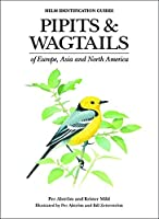 Pipits and Wagtails of Europe, Asia and North America: Identification and Systematics (Helm Identification Guides)