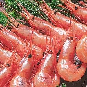 甘えび 天然ロシア産 特大なんばんえび 刺身用 (1kg)