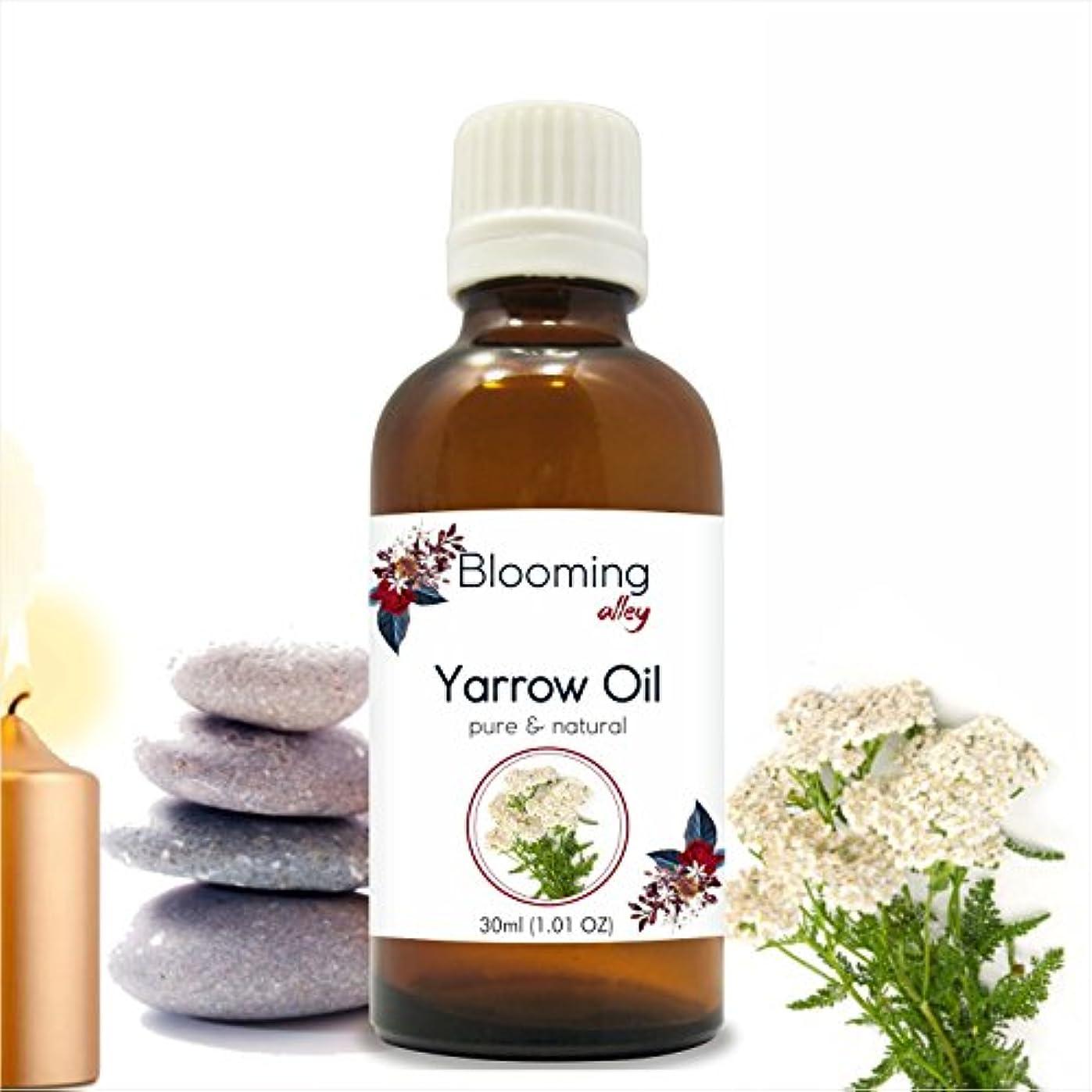 暗殺インディカ貼り直すYarrow Oil (Achillea Millefolium) Essential Oil 30 ml or 1.0 Fl Oz by Blooming Alley