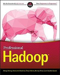 Professional Hadoop (English Edition)