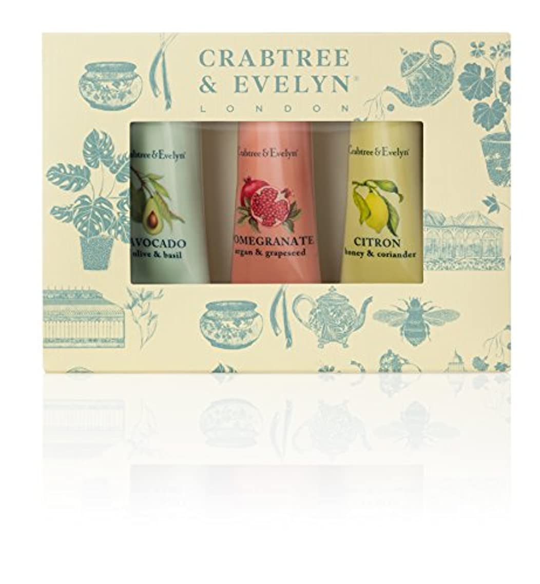ハドルいろいろ芝生クラブツリー&イヴリン Botanicals Hand Therapy Set (1x Citron, Honey & Coriander, 1x Pomegranate, Argan & Grapeseed, 1x Avocado...