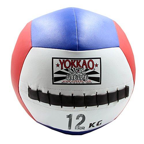 My Vision マッスルボール 潜在能力 メディシンボール トレーニング インナーマッスル 筋トレ ウェイト 重り ボール 運動 筋肉 フィットネス (12kg) MV-MASBALL-12
