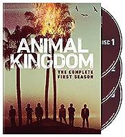 Animal Kingdom: The Complete First Season [リージョン1]