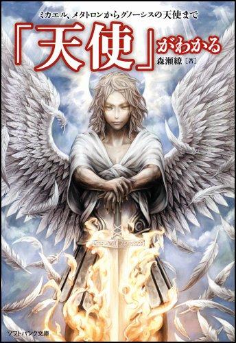 「天使」がわかる ミカエル、メタトロンからグノーシスの天使まで (ソフトバンク文庫)の詳細を見る