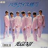 光GENJI パラダイス銀河/Long Run EP盤