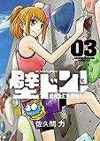 壁ドン! (3) (ビッグコミックス)