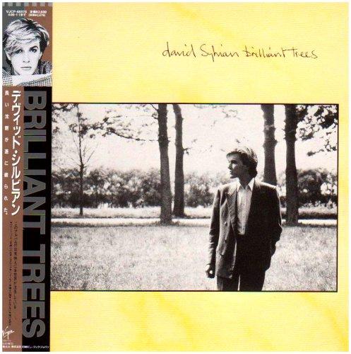 ブリリアント・トゥリーズ(紙ジャケット仕様) / デビッド・シルビアン (CD - 2008)
