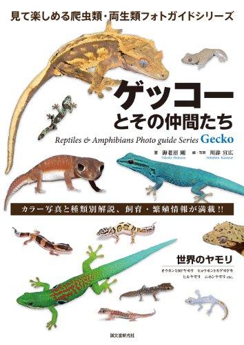 ゲッコーとその仲間たち: 世界のヤモリ―オウカンミカドヤモリ ヒョウモントカゲモドキ ヒルヤモリ ニホンヤモリ etc (見て楽しめる爬虫類・両生類フォトガイドシリーズ)の詳細を見る