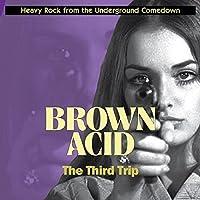 BROWN ACID: THE THIRD