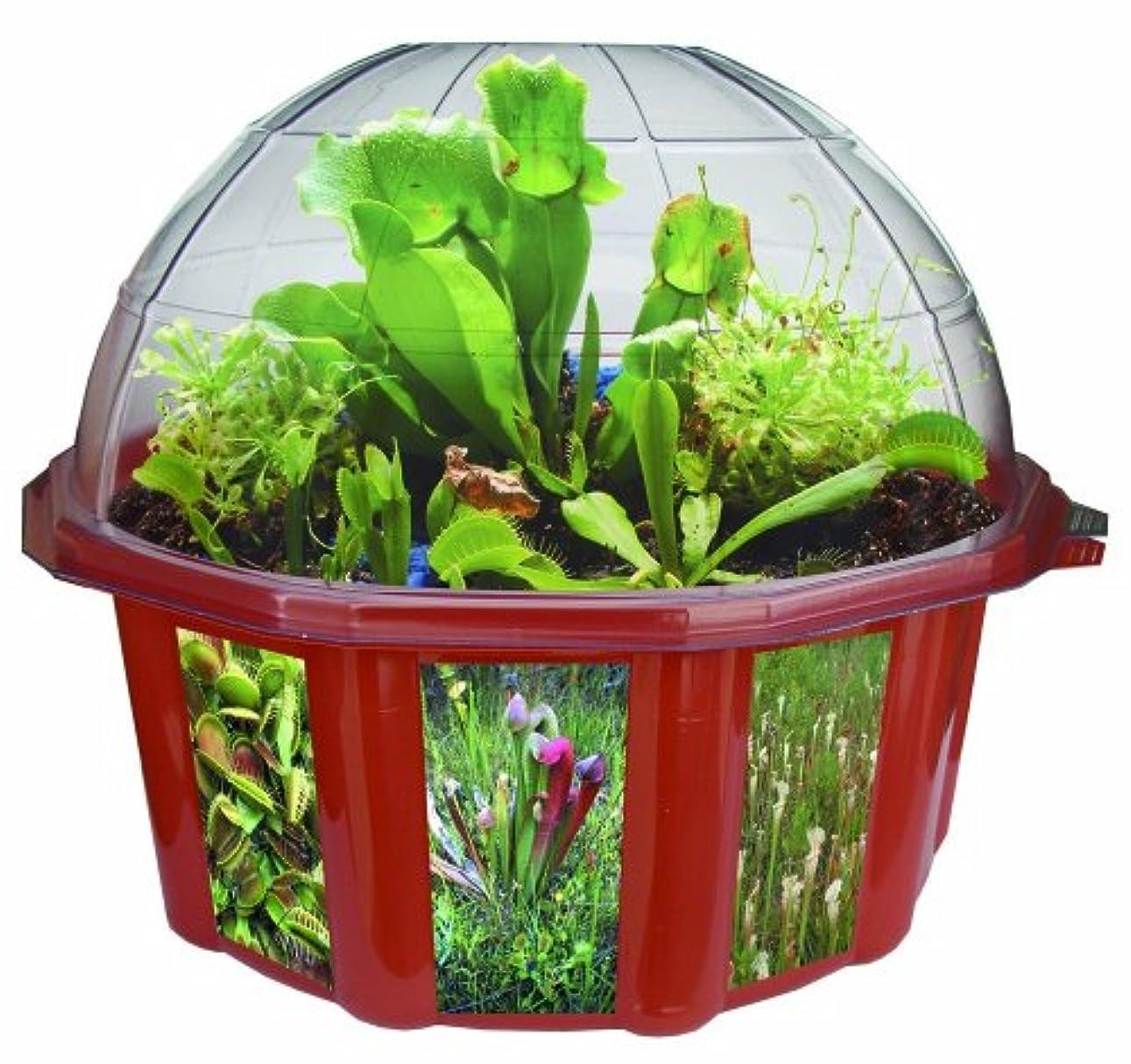 ごみ止まるページDuneCraft Dome Terrariums - Carnivorous Plants by DuneCraft