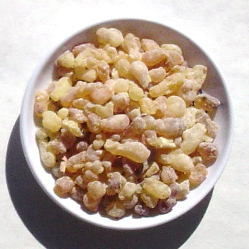 反対する放出バックアップSweet Frankincense – 1ポンド – Traditional Incense (樹脂)バルク