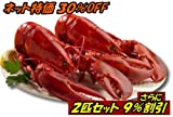 特大活ロブスター(オマール海老[エビ])アメリカ東海岸産 450g 2尾