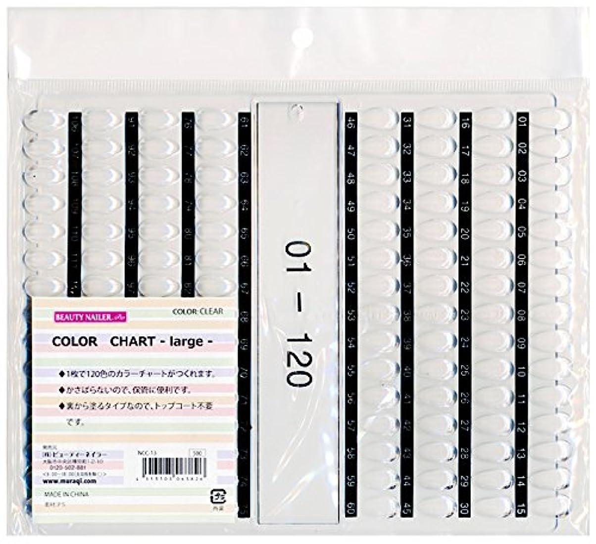 ニッケルバス連合カラーチャート ラージ(NCC-13)
